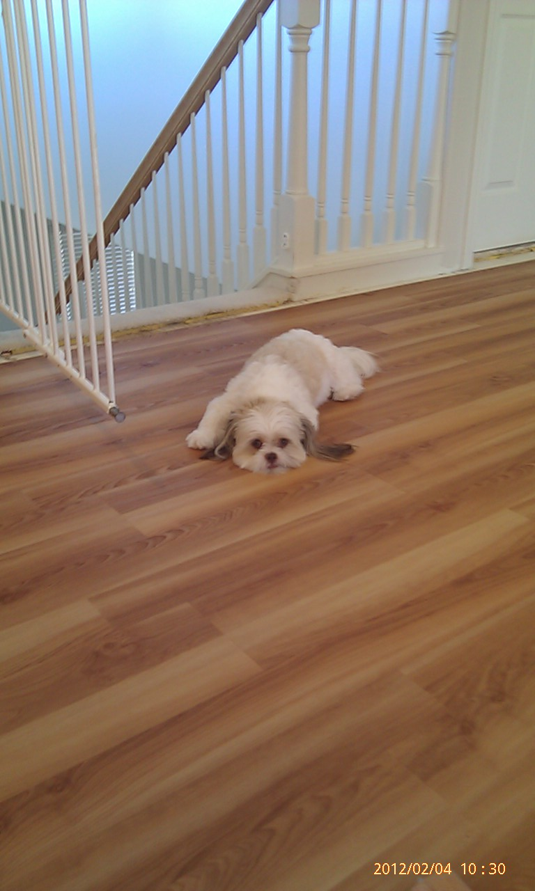 allure vinyl plank flooring installation instructions