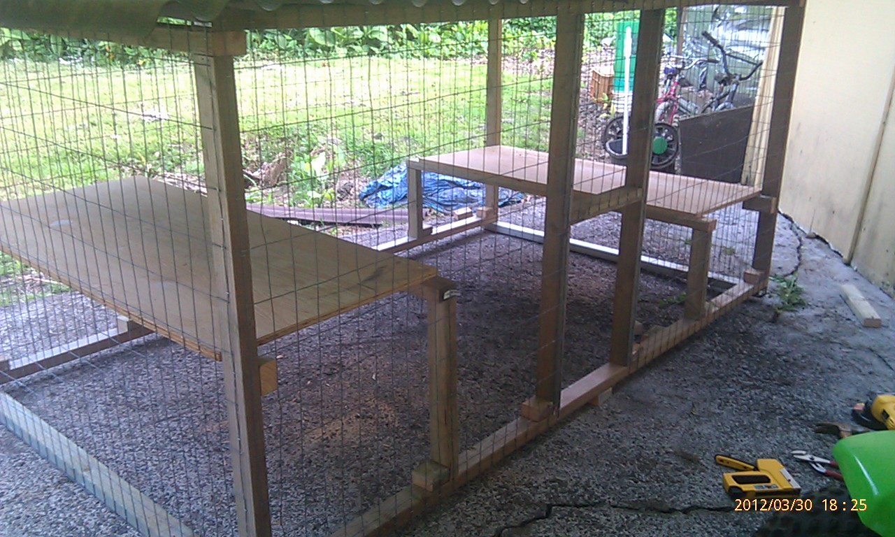 Dog Kennel Build Honolulu Hawaii 722 1120 Dog Kennel Build